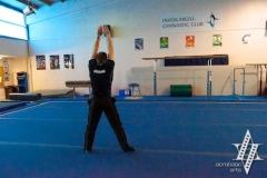 Cartwheel - Side
