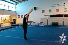 Cartwheel - Step-in