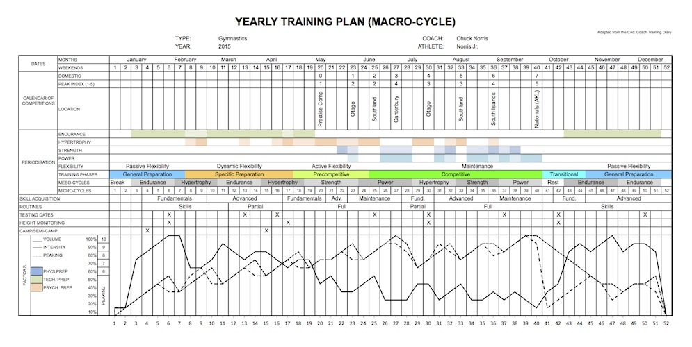 Periodisation an overview acrobatic arts for Undulating periodization template