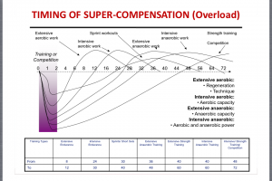 timing-of-super-compensation